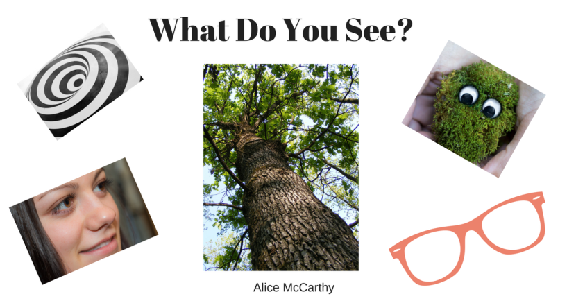 What Do You See_